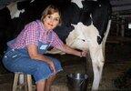 vaca.jpg