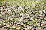 campo-seco-del-fango-14320100.jpg
