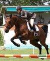 la-infanta-elena-montando-a-caballo.jpg