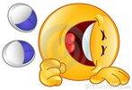 emoticon-de-risa-16999466.jpg