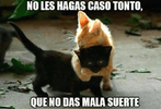Gato-negro.png